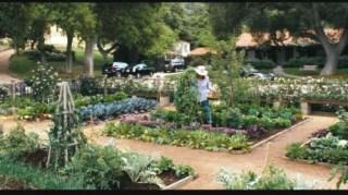 it's complicated garden